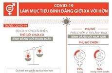 [Infographics] COVID-19 làm mục tiêu bình đẳng giới xa vời hơn