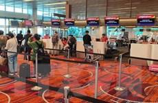 Dịch COVID-19: Đưa hơn 230 công dân Việt Nam từ Singapore về nước