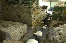 Đã hoàn thành nhập kho dự trữ quốc gia đủ số lượng thóc và gạo