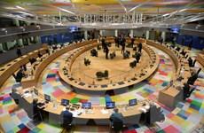 Hội nghị thượng đỉnh đặc biệt của EU: Tự định hình lại