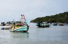 Nhiều khó khăn, vướng mắc trong thực hiện Luật Thủy sản 2017