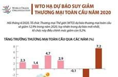 WTO hạ dự báo suy giảm thương mại toàn cầu năm 2020