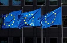 EU tiếp tục nới lỏng các quy định viện trợ chính phủ đến giữa năm 2021