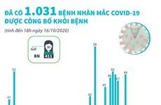 Đã có 1.031 bệnh nhân mắc COVID-19 được công bố khỏi bệnh