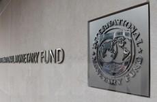 IMF kêu gọi các quốc gia MENA đẩy mạnh cải cách kinh tế