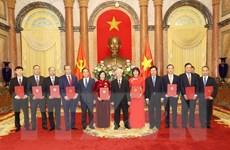 Tổng Bí thư, Chủ tịch nước trao quyết định bổ nhiệm, tiếp các Đại sứ