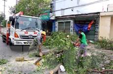 Bão số 9: Hơn 53.300 nhà tại Quảng Ngãi bị tốc mái, hư hỏng
