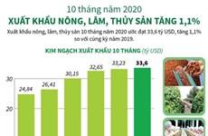 Xuất khẩu nông, lâm, thủy sản tăng 1,1% bất chấp dịch COVID-19
