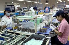 Hơn 591 triệu USD đầu tư vào các Khu chế xuất-Khu công nghiệp TP.HCM