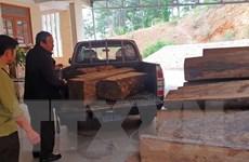Lâm Đồng: Truy đuổi xe chở gỗ lậu trên đường Trường Sơn Đông
