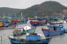 Các tỉnh Khánh Hòa, Thừa Thiên-Huế và Phú Yên ứng phó với bão số 12