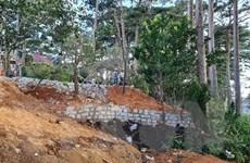 Giải tỏa việc lấn chiếm hơn 800 m2 đất rừng thông ở cửa ngõ Đà Lạt