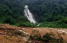 Quảng Bình: Phát hiện thi thể 2 người đàn ông trong rừng