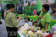 150 doanh nghiệp tham gia Hội chợ hàng Việt-Đà Nẵng 2020
