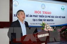 Phát triển càphê đặc sản của Việt Nam là hướng đi phù hợp