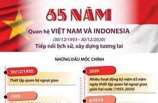 Quan hệ Việt Nam-Indonesia: Tiếp nối lịch sử, xây dựng tương lai