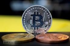 Bitcoin sẽ là đồng tiền dự trữ an toàn trong tương lai?
