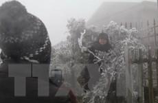 Lạng Sơn: Đỉnh Mẫu Sơn xuất hiện băng tuyết, nhiệt độ âm 1,6 độ C