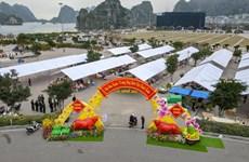 Dừng và thu hẹp quy mô tổ chức các hoạt động văn hóa dịp Tết Tân Sửu