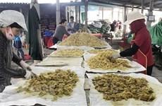 Các làng nghề truyền thống Cố đô Huế sôi động vào vụ Tết