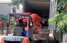 Hải Dương xuất bán 48 tấn càrốt trong ngày mùng Một Tết Tân Sửu