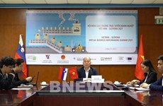 Xúc tiến hợp tác kinh doanh và đầu tư về cơ khí giữa Việt Nam-Slovenia