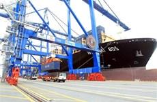 Cục Hàng hải kiểm tra giá vận chuyển container của hãng tàu ngoại