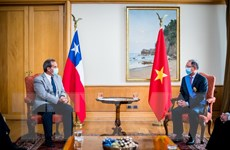 Quan hệ hữu nghị Việt Nam và Chile ngày càng gắn bó, phát triển mạnh