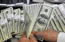 Giá đồng USD ổn định gây áp lực lên giá vàng trong nước