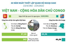 [Infographics] Quan hệ Việt Nam và Cộng hòa dân chủ Congo
