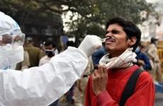 Dịch COVID-19: Ấn Độ ghi nhận hơn 200.000 ca mắc mới