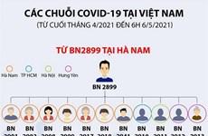 [Infographics] Các chuỗi COVID-19 xuất hiện tại Việt Nam