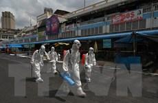 Campuchia có thêm 431 ca mắc COVID-19 lây nhiễm trong nước