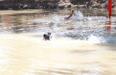 Hải Dương: Khẩn trương tìm kiếm một trẻ em mất tích khi tắm sông