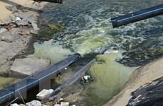 Lâm Đồng: Xử phạt một doanh nghiệp FDI vì xả thải gây ô nhiễm