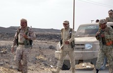 Mỹ, Anh, Ai Cập kêu gọi Houthi chấm dứt cuộc tấn công ở miền Bắc Yemen