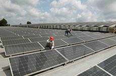 Phát triển điện Mặt Trời ở Tây Nguyên: Hướng tới phát triển bền vững