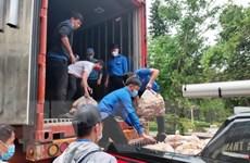 """Lâm Đồng đảm bảo """"luồng xanh"""" cho tuyến vận tải hàng hóa thiết yếu"""