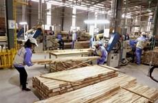Ấn Độ không áp thuế chống bán phá giá gỗ MDF nhập khẩu từ Việt Nam