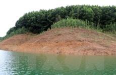 Thừa Thiên-Huế: Làm rõ trách nhiệm 3 nhà máy thủy điện về trồng rừng