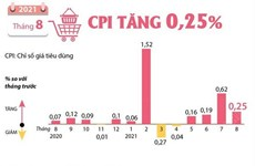 [Infographics] Chỉ số giá tiêu dùng tháng Tám tăng 0,25%