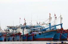 Bão Conson: Thanh Hóa kêu gọi tàu thuyền vào nơi tránh trú bão an toàn