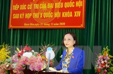 Phê chuẩn ĐBQH chuyên trách ở Vĩnh Long, Thanh Hóa, Nghệ A và Hà Nội