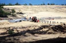 Bình Định: Khẩn trương kiểm tra, xác minh, xử lý vụ phá 5,26ha rừng