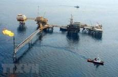 Chiều 15/9, giá dầu châu Á đi lên sau số liệu về dự trữ dầu thô tại Mỹ