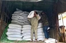 Xuất cấp 739,86 tấn gạo cho Bình Định hỗ trợ người dân bị hạn hán