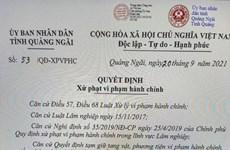 Quảng Ngãi: Phạt hơn 112 triệu đồng vì mua bán vận chuyển lâm sản