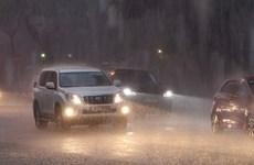 Chiều tối và đêm 1/10, mưa và dông bao trùm các khu vực