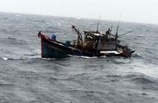 Cứu hộ tàu cá và 9 ngư dân bị nạn trên biển ở Quảng Ngãi