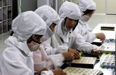 Cảnh báo về vệ sinh an toàn lao động ngành lắp ráp điện tử